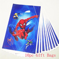 10pc Gift Bags