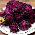Ink Red Rose