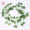 Creeper leaf