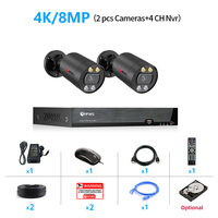 4CH NVR and 2 Camera