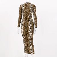 Leopard long