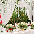 Artificial Silk Wisteria Vine Ratta Silk Hanging Flower Wedding Decor, 12 Pcs Fake Flowers Home Wall Garden Decoration preview-2